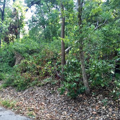 Residential Lots & Land For Sale: Willow Dr