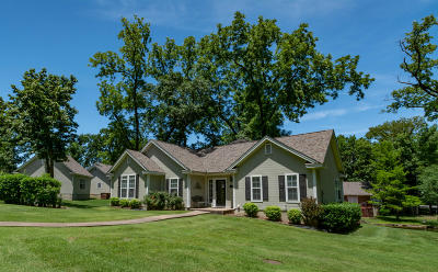 Afton Single Family Home For Sale: 56201 E 285 Rd #39