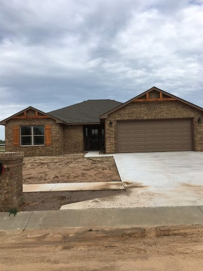 Perkins OK Single Family Home For Sale: $175,500