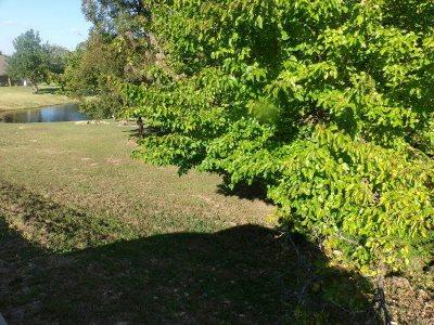 Cushing Residential Lots & Land Back On Market
