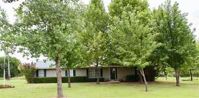 Ripley Single Family Home For Sale: 4819 S Bethel