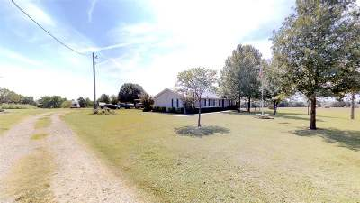 Ripley Single Family Home For Sale: 4819 S Bethel Road