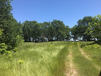 Residential Lots & Land For Sale: 9634 Loves Valley Road