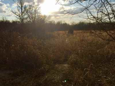 Lone Grove Residential Lots & Land For Sale: Tbd Rolling Hills Road