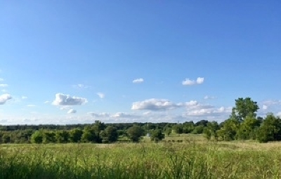 Residential Acreage Motivated Seller: 794 Airport Road