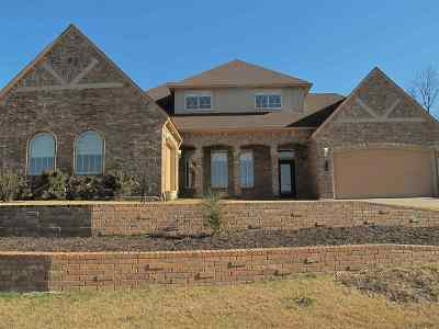 Ardmore Single Family Home For Sale: 208 Woods Lane
