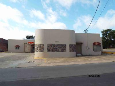 Carter County Commercial For Sale: 20 NE 3rd
