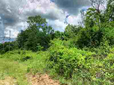 Carter County Residential Lots & Land For Sale: 30 Acres Park Street