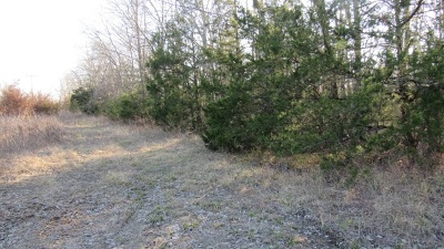 Residential Lots & Land For Sale: Hwy 93