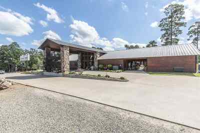 Commercial For Sale: 6613 N Hw 259