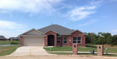 Single Family Home For Sale: 325 Sage Court