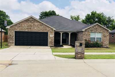 Single Family Home For Sale: 4702 Lakeshore Drive
