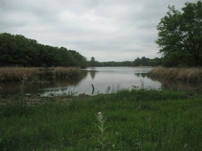 Residential Lots & Land For Sale: Lot 17 Lake Raymond Gary