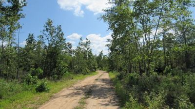 Residential Lots & Land For Sale: Red Road