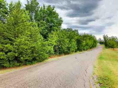 Carter County Residential Lots & Land For Sale: 19 Acres Ingleside Drive