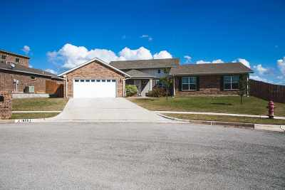 Ardmore OK Single Family Home For Sale: $197,900