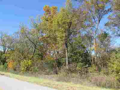 Carter County Residential Lots & Land For Sale: 3584 Buckskin Road