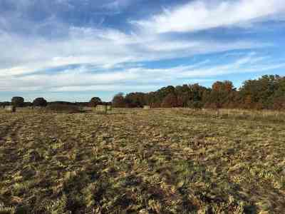 Wilson Residential Lots & Land For Sale: 0 Hwy 76 S Wilson