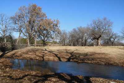 Carter County Residential Acreage For Sale: 18871 Pecan Street