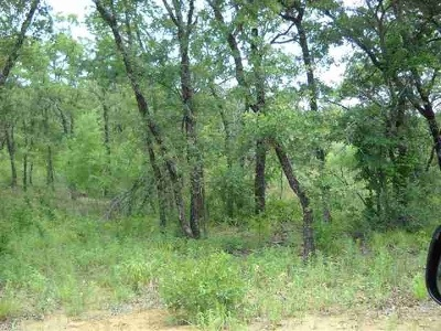 Carter County Residential Lots & Land For Sale: 106 Royal Oaks Lane