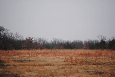 Garvin County Residential Lots & Land For Sale: 004 N County Road 3250