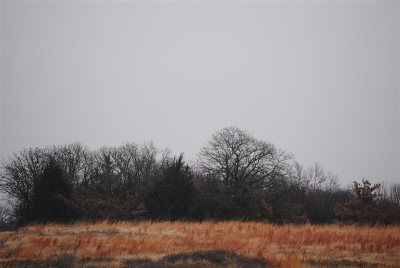 Garvin County Residential Lots & Land For Sale: 005 N County Road 3250