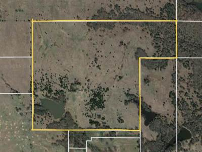 Carter County Residential Lots & Land New: Tbd 100 Acres Mesa Road
