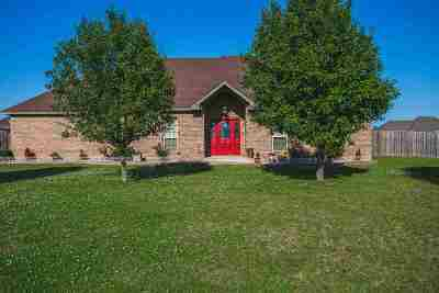 Carter County Single Family Home New: 46 Fairview Lane