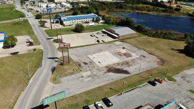 Ardmore Commercial For Sale: 128 Holiday Drive