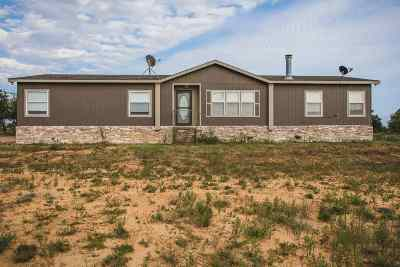 Ardmore, Lone Grove, Dickson Residential Acreage For Sale: 4306 Jehovah Road