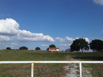 Carter County Residential Acreage For Sale: 9162 Jehovah Road