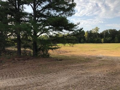 Carter County Residential Lots & Land For Sale: 3984 McClain Road
