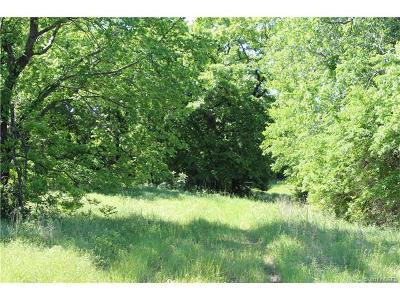 Catoosa Residential Lots & Land For Sale: 3200 S Hwy 167 Highway
