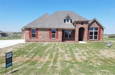 Skiatook Single Family Home For Sale: 3951 E 130th Street N