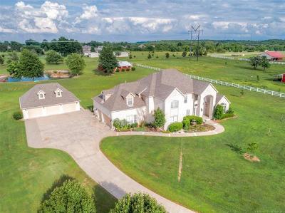 Broken Arrow Single Family Home For Sale: 8101 S Winwood Avenue