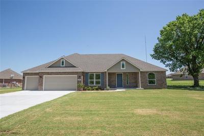 Broken Arrow Single Family Home For Sale: 25847 E 103rd Place S
