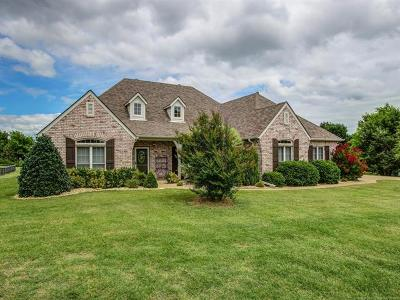 Collinsville Single Family Home For Sale: 11845 Skyline Drive