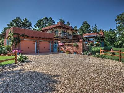 Bixby Single Family Home For Sale: 21491 E 191st Street