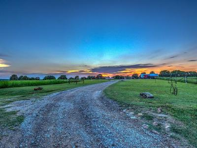 Osage County, Washington County Single Family Home For Sale: 1377 County Road 4790