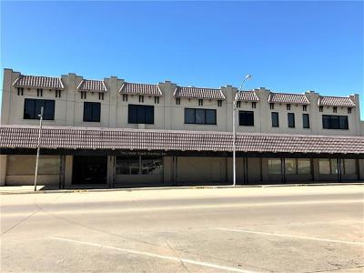 Commercial For Sale: 315 E Main Street