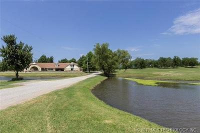 Tulsa County, Creek County, Osage County, Rogers County, Okmulgee County, Wagoner County Single Family Home For Sale: 820 Lynn Lane Road