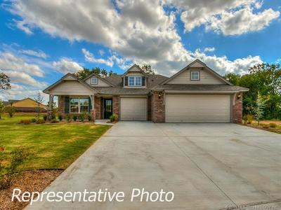 Bixby Single Family Home For Sale: 9313 E 131st Place S