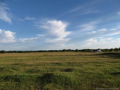 Residential Lots & Land For Sale: 38308 S 4370 Road
