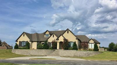 Creek County Single Family Home For Sale: 580 Lakeview Circle