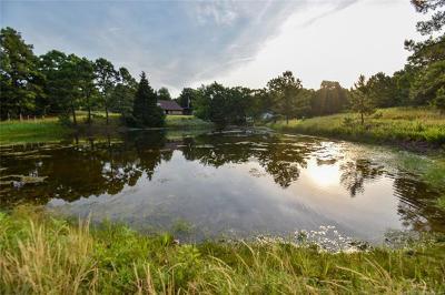 Locust Grove OK Single Family Home For Sale: $349,900