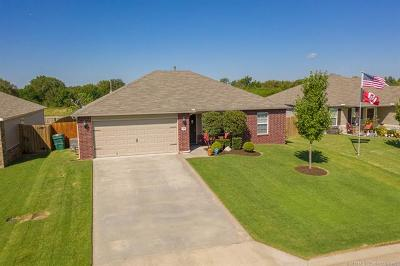 Broken Arrow Single Family Home For Sale: 9196 S 250th East Avenue