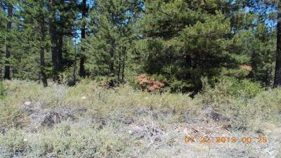 Residential Lots & Land For Sale: 16114 Amber Lane