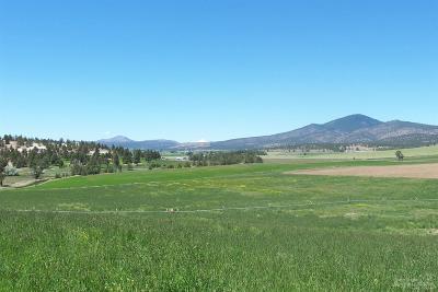 Prineville Farm & Ranch For Sale: 900 Northwest Gerke Road