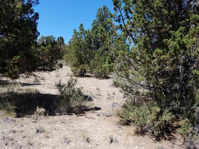 Prineville Residential Lots & Land For Sale: Southeast Loafer Road