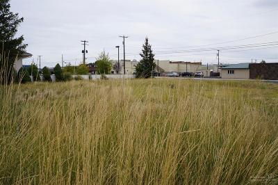 Residential Lots & Land For Sale: 147 Northwest 5th Street